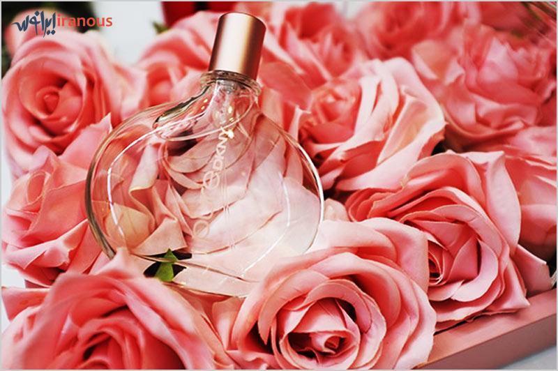 نگهداری عطر ها
