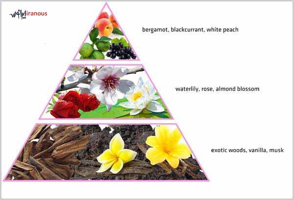 ترفندهایی برای شناخت عطرهای اورجینال از تقلبی و فیک