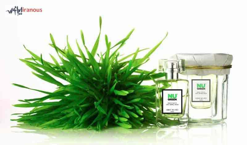 عطر ادکلن با نت و رایحه سبز