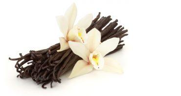 معرفی 5 عطر با بوی وانیل از برند های مختلف